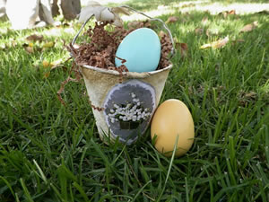Easter or Chicken Egg