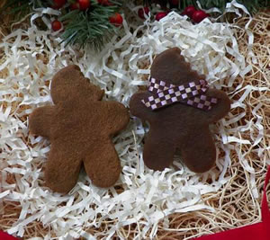 Gingerbread Man Soap, Beeswax and Melt Mold